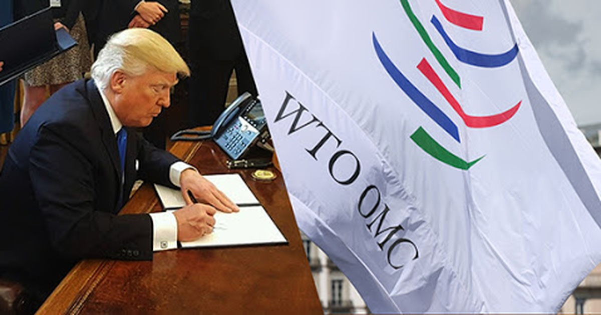 Phán quyết khiến Trump tức giận tại WTO – casino vnbet Baccarat