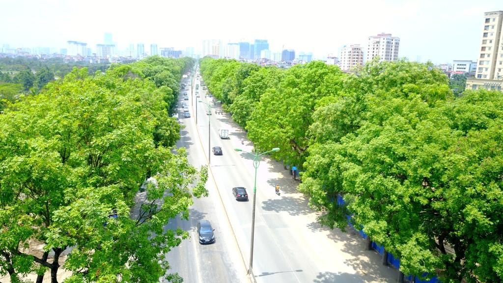 """Việt NamThủ tướng: """"Đề xuất trồng 1 tỷ cây xanh trong 5 năm tới"""" Xổ số Fun88 có gì hấp dẫn"""